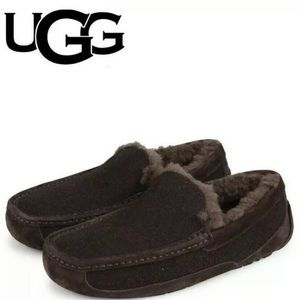 UGG Ascot Brown Wool Sheepskin 3233 Slippers